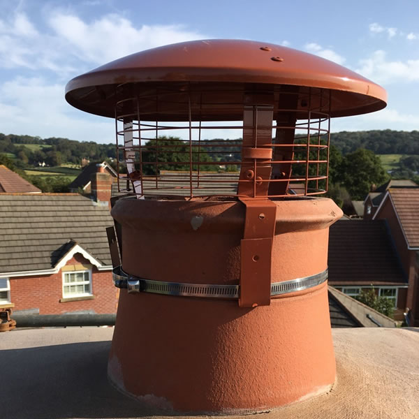 Chimney Cowl Products Standard Bird Guard